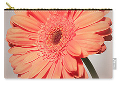 Carry-all Pouch featuring the photograph Dazzling Gerbera Daisy by Anita Oakley