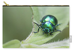 Dead-nettle Leaf Beetle - Chrysolina Fastuosa Carry-all Pouch by Jivko Nakev