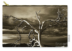 Dead Tree In Death Valley 10 Carry-all Pouch by Micah May