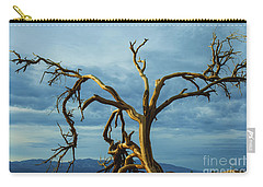Dead Tree In Death Valley 7 Carry-all Pouch by Micah May