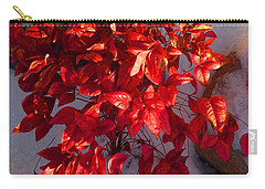 Carry-all Pouch featuring the photograph December Burning Bush by Anastasia Savage Ealy