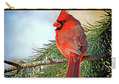 Carry-all Pouch featuring the photograph December's Cardinal by Rodney Campbell