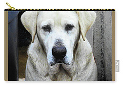 Deck Hand Dog Carry-all Pouch by Laura Ragland