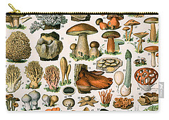 Decorative Print Of Champignons By Demoulin Carry-all Pouch by American School