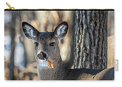 Carry-all Pouch featuring the photograph Deer At The Salad Bar by Paul Freidlund