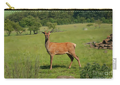Deer Calf. Carry-all Pouch