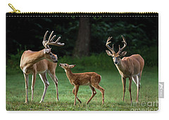 Carry-all Pouch featuring the photograph Deer Family Portrait by Andrea Silies