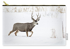 Carry-all Pouch featuring the photograph Deer In The Snow by Rebecca Margraf