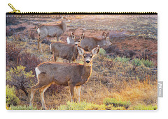 Carry-all Pouch featuring the photograph Deer In The Sunlight by Darren White