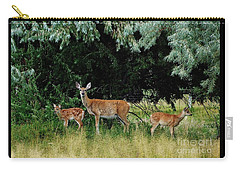 Deer Mom Carry-all Pouch by Larry Campbell
