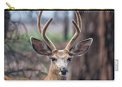 Deer Stare Carry-all Pouch