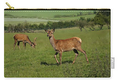 Deers On A Hill Pasture. Carry-all Pouch