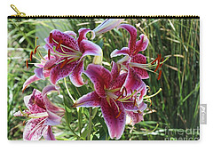 Delightful  Stargazer Carry-all Pouch by Yumi Johnson
