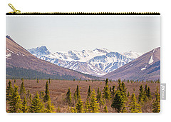 Denali Wilderness Beauty Carry-all Pouch by Allan Levin