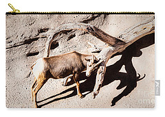 Desert Bighorn Ram Carry-all Pouch by Lawrence Burry