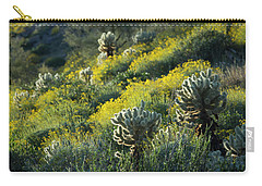 Desert Color And Light Carry-all Pouch