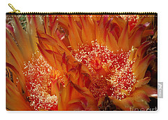 Desert Fire Carry-all Pouch by Kathy McClure