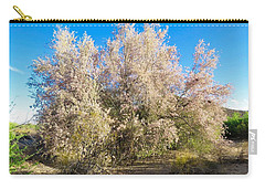 Desert Ironwood Tree In Bloom - Early Morning Carry-all Pouch