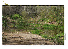 Desert Oasis Carry-all Pouch by Anne Rodkin
