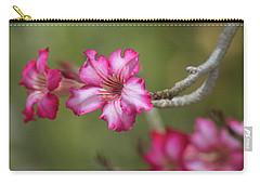 Desert Rose 5964-041118-1 Carry-all Pouch
