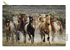 Desert Showers Carry-all Pouch by Joan Davis