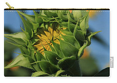 Carry-all Pouch featuring the photograph Developing Petals On A Sunflower by Chris Berry