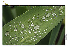 Carry-all Pouch featuring the photograph Dew Drops On Leaf by Jean Noren