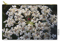 Dew On Queen Annes Lace Carry-all Pouch