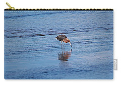 Carry-all Pouch featuring the photograph Ding Darling's Number One II by Michiale Schneider