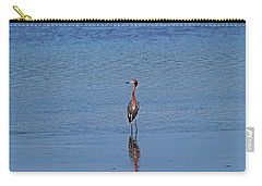 Carry-all Pouch featuring the photograph Ding Darling's Number One IIi by Michiale Schneider