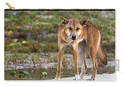 Dingo On 75 Mile Beach, Carry-all Pouch
