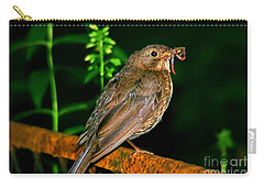 Carry-all Pouch featuring the photograph Dinner Time  by Mariola Bitner