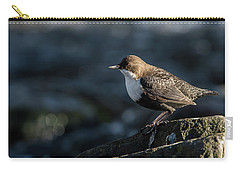 Dipper Carry-all Pouch by Torbjorn Swenelius