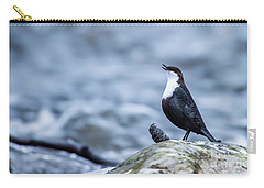 Carry-all Pouch featuring the photograph Dipper's Call by Torbjorn Swenelius