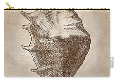 Carry-all Pouch featuring the drawing Distressed Antique Nautical Seashell 1  by Karen Whitworth