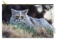 Disturbed Cat - Grace Carry-all Pouch by Everet Regal