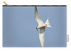 Carry-all Pouch featuring the photograph Dive by Tony Beck