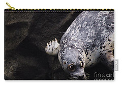 Carry-all Pouch featuring the photograph Diving In Head First by Nick Gustafson