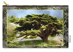 Do-00318 Cedar Barouk - Framed Carry-all Pouch