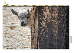Do You Think Mom Saw Me Carry-all Pouch by Judy Wolinsky