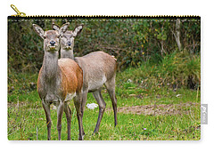 Doe Eyed Carry-all Pouch