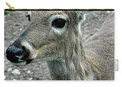 Carry-all Pouch featuring the photograph Doe Eyes by LeeAnn McLaneGoetz McLaneGoetzStudioLLCcom