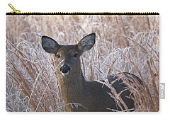 Doe In Winter Carry-all Pouch