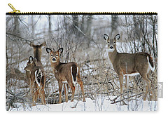 Does And Fawns Carry-all Pouch by Brook Burling