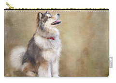 Carry-all Pouch featuring the digital art Master Of The Domain by Colleen Taylor
