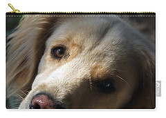 Dog Eyes Carry-all Pouch