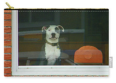 Carry-all Pouch featuring the photograph Doggie In The Window by Lenore Senior
