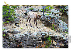 Carry-all Pouch featuring the photograph Don't Jump by Shane Bechler