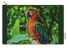 Carry-all Pouch featuring the photograph Don't Ruffle My Feathers by Marie Hicks