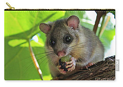 Dormouse Carry-all Pouch